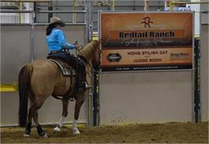 REDTAIL RANCH PERFORMANCE HORSES