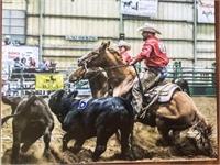 All Around Gelding ~ Ranch, Rodeo, Head, Heel & Cowhorse