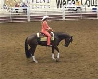 Athletic Reining horse, Rodeo Queen, Roping Horse