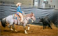 6 year red roan mare: Safe, sound, consistent non-pro horse.