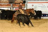 7 YO DUAL REY MARE, FINISHED CUTTER, NCHA AND ACHA $$$$ WIN NOW - BREED LATER