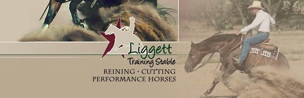 LIGGETT TRAINING STABLE BRUCE  LIGGETT
