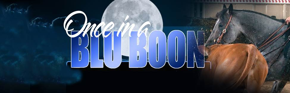 ONCE IN A BLU BOON ONCE IN A BLU BOON