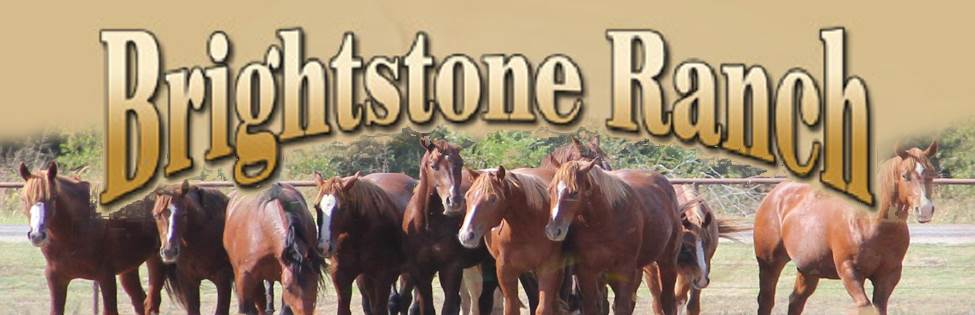 BRIGHTSTONE RANCH Keith Feister
